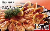 黒豚ギョーザ120個(12個×10P)国産素材にこだわった冷凍餃子!