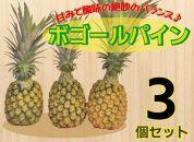 ★2022年6月下旬発送開始!!★宮古島産ボゴールパイン3個セット