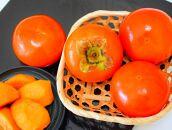 【秋の美味】和歌山の富有柿 約7.5kg (ご家庭用)
