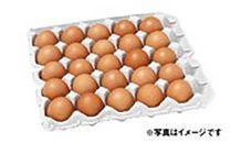 碧空たまご(160個入)