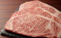 1)茨城が誇る極上の霜降り牛肉「常陸牛」ステーキ用(サーロイン250g×3枚)