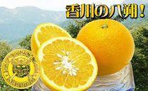 〈香川産〉あふれる果汁タップリ完熟はっさく10kgの詰め合わせ