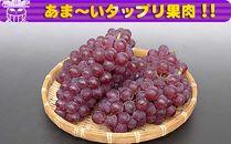 <香川産>デラウエアー[秀品]2kgの詰め合わせ