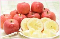 まぼろしのりんご 高徳(こうとく)ご家庭用1.7kg(6~13玉入り)