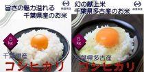 美味しいお米セット 多古産コシヒカリ5kg・千葉県産コシヒカリ5kg