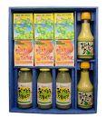 南国果汁青切りギフト