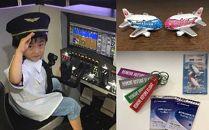 飛行機マグネット&パイロットが教える操縦体験20分