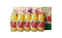◆宇都宮のりんご園のりんごジュース5本セット