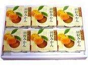 【5月31日受付終了】高級『田村みかん』を丸ごと使用!フルーツ丸ごとゼリーセット6個入