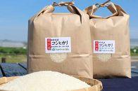 【平成30年度産】近江米「コシヒカリ」20kg