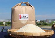 近江米「コシヒカリ」10kg