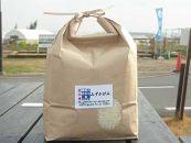 近江米「みずかがみ」15kg