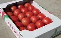 ◆JAうつのみや産地直送 トマト A品 4kg(20~24玉)