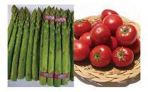 ◆JAうつのみや産地直送 トマト・アスパラガスと季節の野菜セット