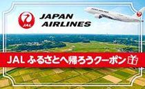 東根市JALふるさとへ帰ろうクーポン(30,000点分)