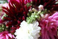 年4回庄内の美しい花で春夏秋冬を感じる「華祭」