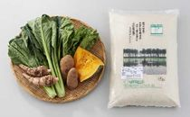 旬の野菜と米セット