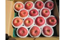 【期間限定】サンふじ りんご