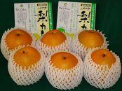 【044】王秋梨・二十世紀梨カレーセット