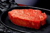 【とちぎ和牛】豪華満喫セット 総重量2.6kg