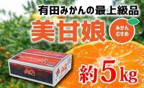 【数量限定】【最上級みかん】「美甘娘」糖度12度以上 5kg紀州グルメ市場