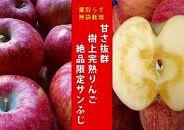 【期間限定】樹上完熟「葉取らずサンふじ」5kg