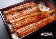 国産ブランド鰻  共水鰻のかば焼き