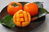 【甘みが自慢】平たねなし柿(4kg)