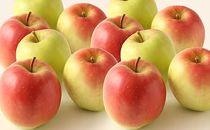 リンゴ好きのバイヤーおすすめ!「さとう果樹園 酸味と甘さが絶妙な林檎(ムツ)」16-20個×2箱