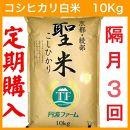 定期便隔月3回コース 京都府産コシヒカリ 白米10kg