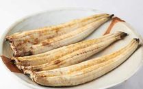 国産うなぎの白焼き3匹(大3匹 1匹120~140g)