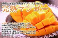 【数量・期間限定】沖縄県産マンゴー 特秀品