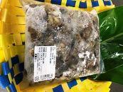 【数量限定】屋久島産「亀の手」 500g【海水で冷凍】