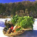 【数量限定100】自然栽培野菜セット(団らん)