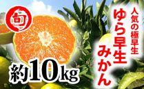ゆら早生10kg 旬の味覚市場【極早生みかん】