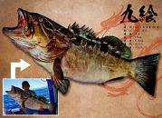Re:Fishデジタル魚拓ターポリン