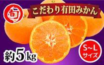 有田みかん 5kg(L~Sサイズ) 旬の味覚市場【こだわり】
