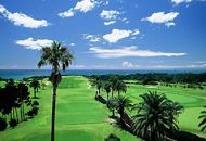 ゴルフ平日セルフ無料プレー券