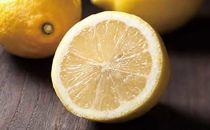 観音山レモン4kg