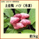 土佐鴨ハツ(冷凍)約1kg/土佐鴨・土佐ジロー飼育研究会
