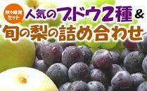 【秋の味覚セット】人気のブドウ2種&旬の梨 旬の味覚市場