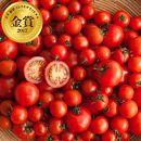 【糖度10以上】高糖度ミニトマト食べ比べセット