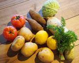 五島列島旬の野菜詰合せセット(秋)
