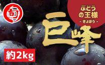 【ぶどうの王様】巨峰 約2kg 旬の味覚市場