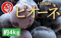 【旬のぶどう】人気のピオーネ 約4kg 【旬の味覚市場】