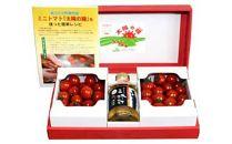 【2019年6月より発送開始】おいしいミニトマト1kgとトマトによく合うごま風味の三杯酢セット