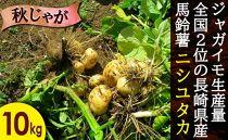 長崎県産飛子の馬鈴薯10kg(秋じゃが)