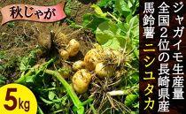 長崎県産飛子の馬鈴薯5kg(秋じゃが)