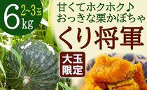 【大玉限定】ホクホク甘い!長崎県産くりかぼちゃ「くり将軍」約6kg(3玉)粉質で栗のような甘み!