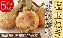 [5/31受付終了]肥料にこだわった「塩玉ねぎ」小玉約5kgちょっとした料理に使い切りサイズ(新玉ねぎ)長崎県産